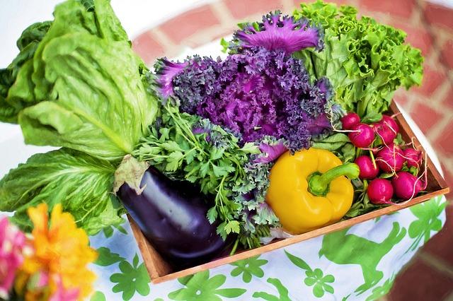 košík zeleniny