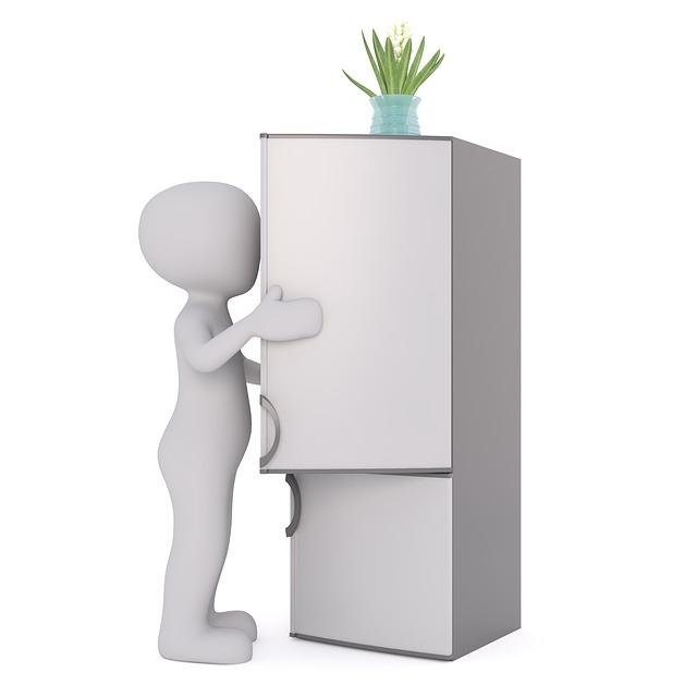 lednička s mrazničkou